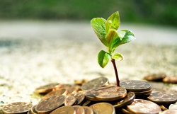 registratsiya inostrannyih investitsiy kiev