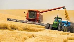 сельское хозяйство_2