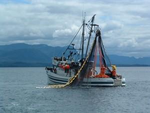 разрешение на рыболовство